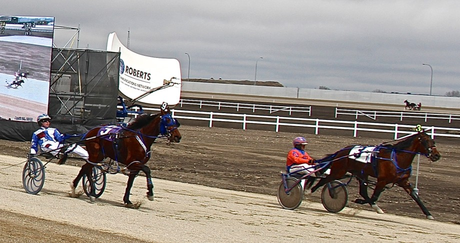 First Race at Century Downs