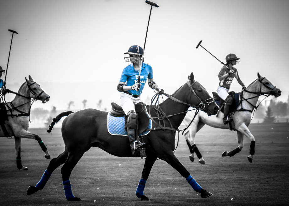 Simon the polo pony and Tiffany Burns